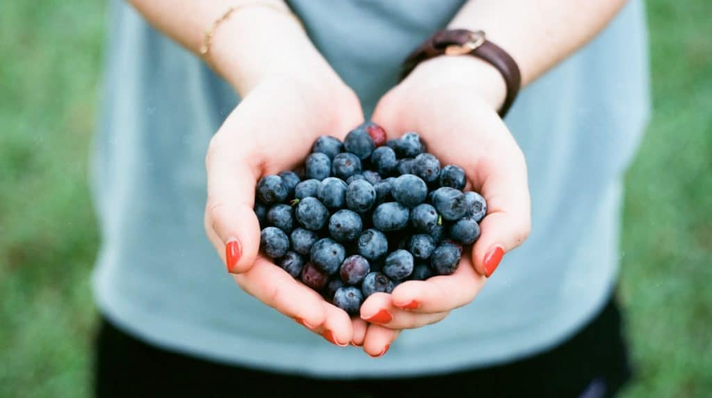blueberries the best super food